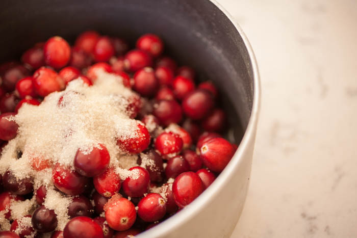 a pot big enough to cook cranberries for cranberry coulis