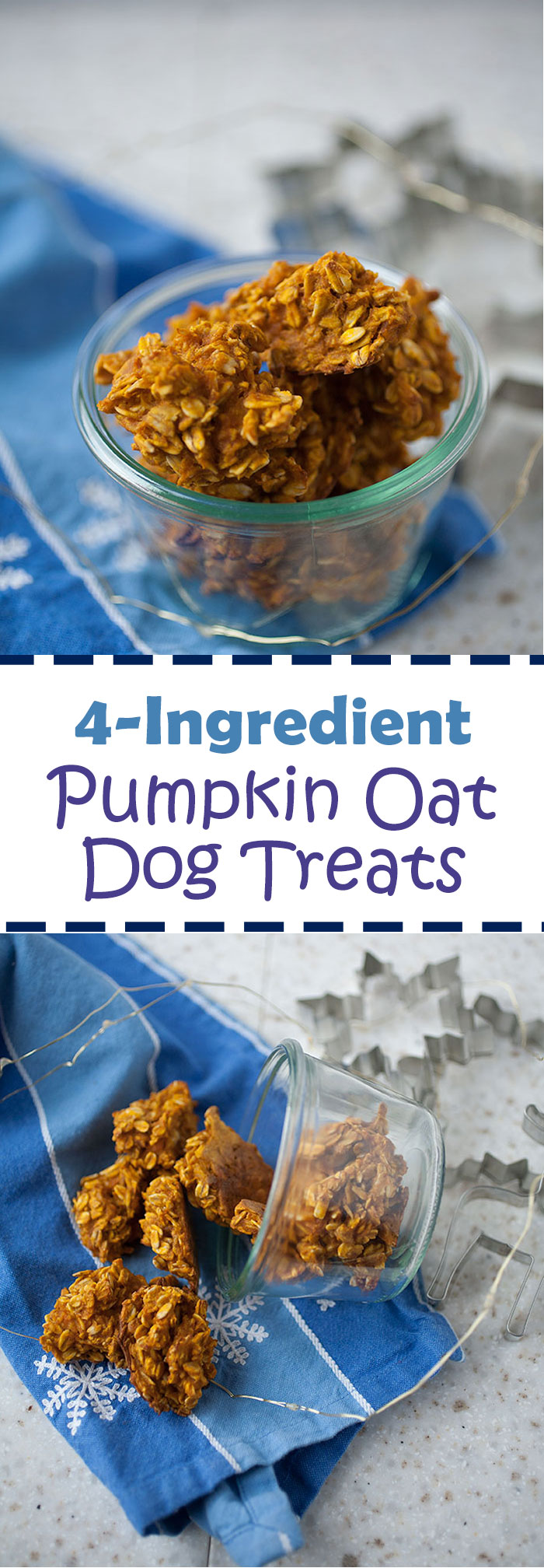 These healthy homemade pumpkin dog treats only take 4 ingredients to make and dogs go crazy over them! They're the perfect homemade holiday gift for your dog.